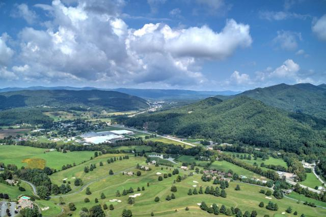 Lot 17 Hawthorn Landing Rd, Mountain City, TN 37683 (#1056320) :: Billy Houston Group