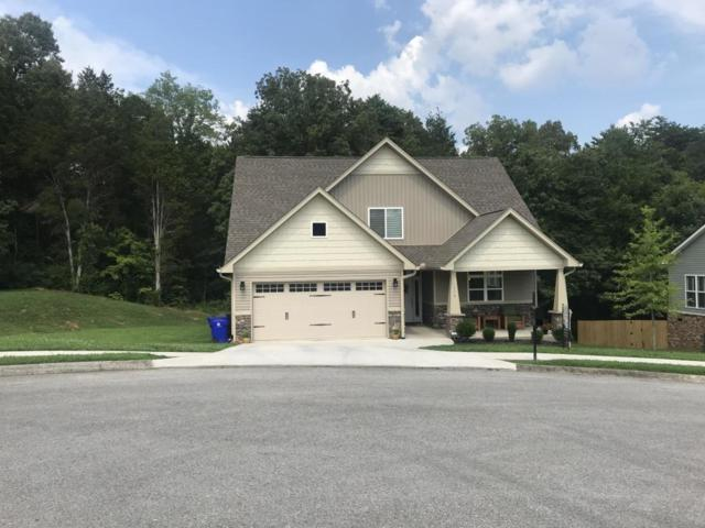 7204 Settlers Path Lane, Knoxville, TN 37920 (#1056757) :: Billy Houston Group