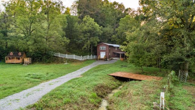 230 Reagan Branch Rd, Seymour, TN 37865 (#1056982) :: Billy Houston Group