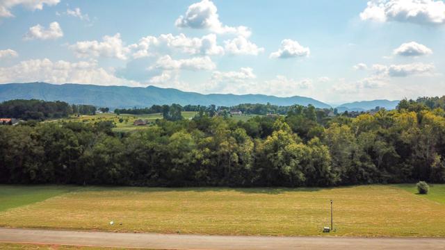 639 Winding Creek Way, Walland, TN 37886 (#1057354) :: Billy Houston Group