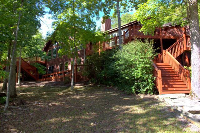 183 Emerald Pt, Sharps Chapel, TN 37866 (#1057711) :: Billy Houston Group