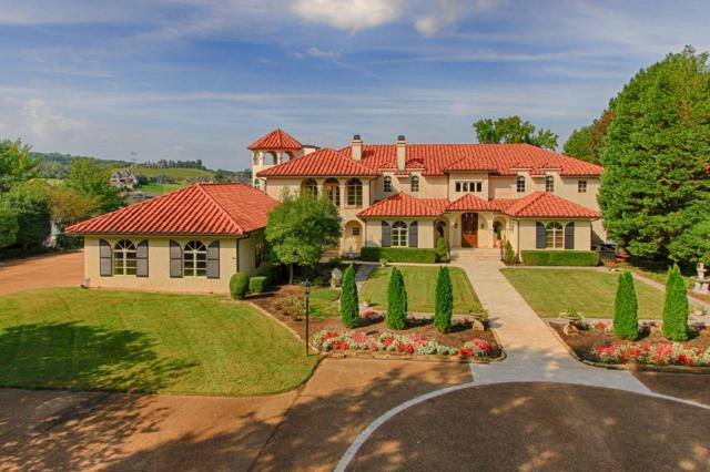 8719 Inlet Drive, Knoxville, TN 37922 (#1058776) :: Realty Executives Associates