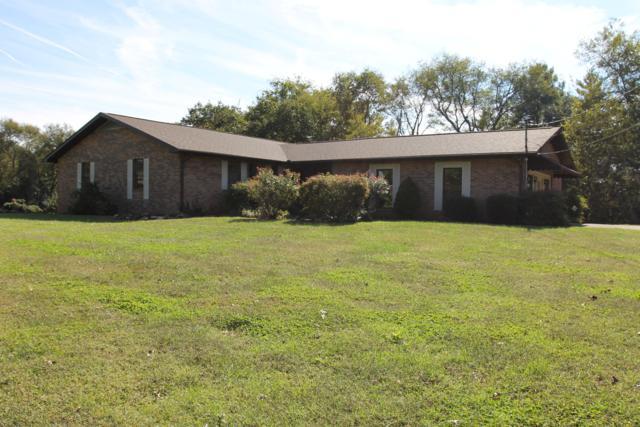217 Springvale Lane, Rockford, TN 37853 (#1058803) :: Billy Houston Group