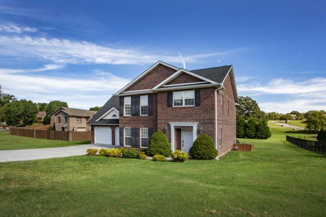 3728 Gooseneck Drive, Knoxville, TN 37920 (#1059087) :: Billy Houston Group
