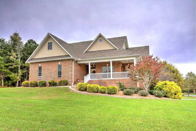 502 Gohi Tr, Vonore, TN 37885 (#1059153) :: Shannon Foster Boline Group