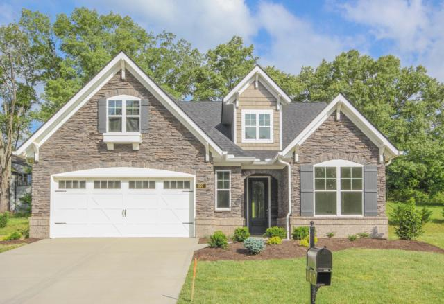 107 Broady Meadow Circle, Maryville, TN 37803 (#1059222) :: Billy Houston Group