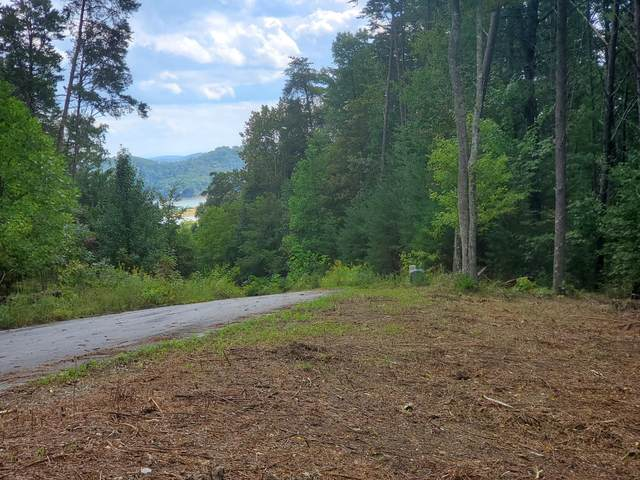 Lot 6 Bayside, Bean Station, TN 37708 (#1059426) :: Tennessee Elite Realty