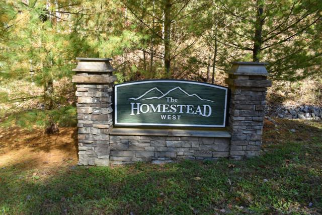 Long Rifle Rd, Walland, TN 37886 (#1059546) :: Billy Houston Group