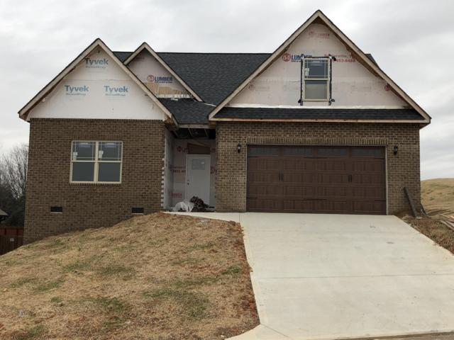 2824 Wallace Hitch Drive, Maryville, TN 37801 (#1060261) :: CENTURY 21 Legacy