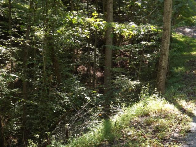 Lot 543 Rockview Drive, Spring City, TN 37381 (#1060268) :: Shannon Foster Boline Group