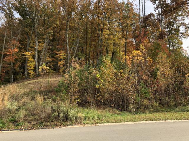 139 Wolf Creek Way, Oak Ridge, TN 37830 (#1061306) :: Shannon Foster Boline Group