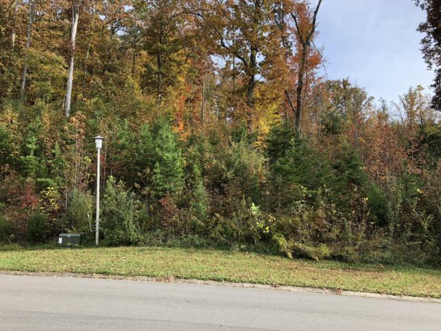 141 Wolf Creek Way, Oak Ridge, TN 37830 (#1061307) :: Shannon Foster Boline Group