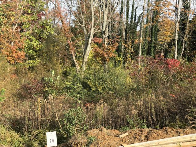 117 Creek View Court, Oak Ridge, TN 37830 (#1061311) :: Shannon Foster Boline Group