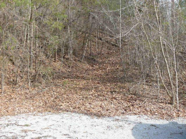 Lot 731 Clear Water Rd, New Tazewell, TN 37825 (#1061381) :: CENTURY 21 Legacy