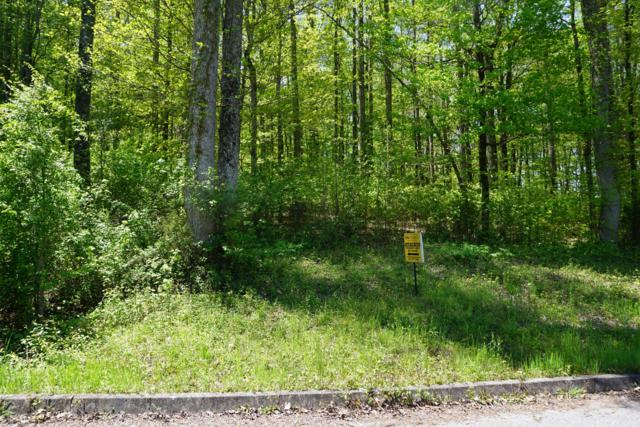 Dogwood Cove Drive, Spring City, TN 37381 (#1061434) :: Billy Houston Group
