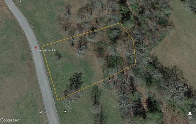 Dogwood Cove Drive, Spring City, TN 37381 (#1061699) :: Billy Houston Group