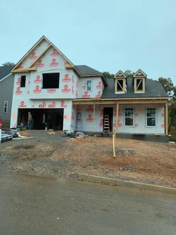 10622 Trulock Lane, Knoxville, TN 37934 (#1062008) :: Shannon Foster Boline Group