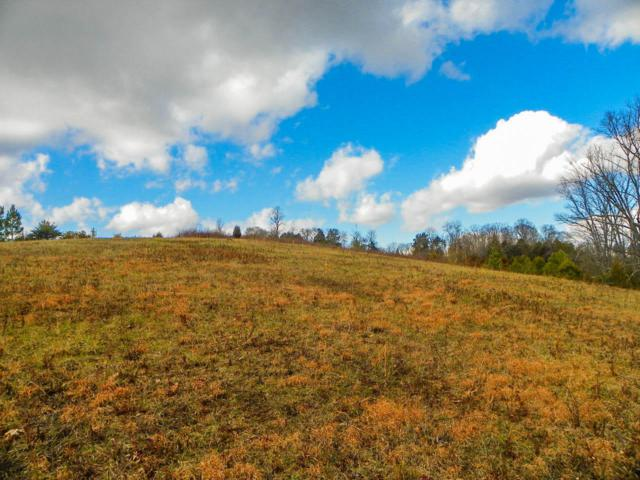 Tract 2 Mccarter Hollow Road, Sevierville, TN 37862 (#1062385) :: Billy Houston Group