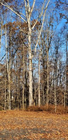 Reuben Ridge Rd, Rockwood, TN 37854 (#1063159) :: The Creel Group | Keller Williams Realty