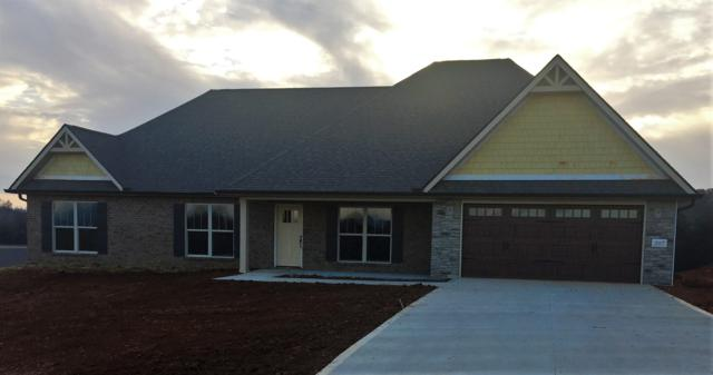 207 Montgomery Farms Drive, Friendsville, TN 37737 (#1063509) :: Catrina Foster Group