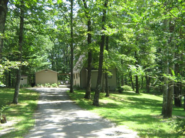947 Running Deer, Crab Orchard, TN 37723 (#1064348) :: Billy Houston Group