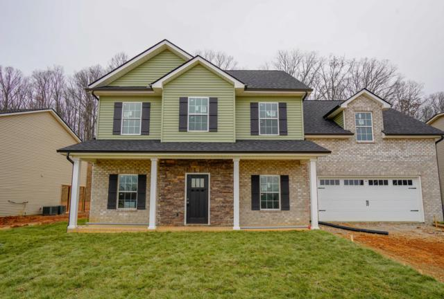 3118 Oakwood Hills Lane, Knoxville, TN 37931 (#1064516) :: Billy Houston Group