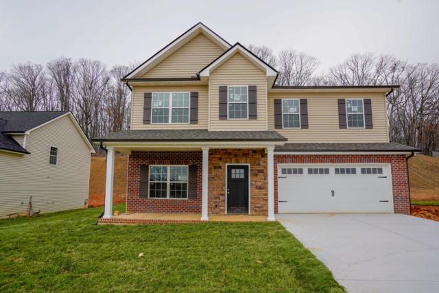 3122 Oakwood Hills Lane, Knoxville, TN 37931 (#1064530) :: Billy Houston Group