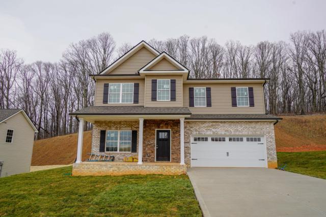 3130 Oakwood Hills Lane, Knoxville, TN 37931 (#1064531) :: Billy Houston Group