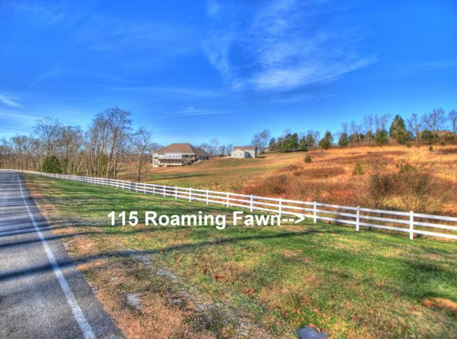 115 Roaming Fawn Drive, Rockwood, TN 37854 (#1064885) :: The Creel Group | Keller Williams Realty
