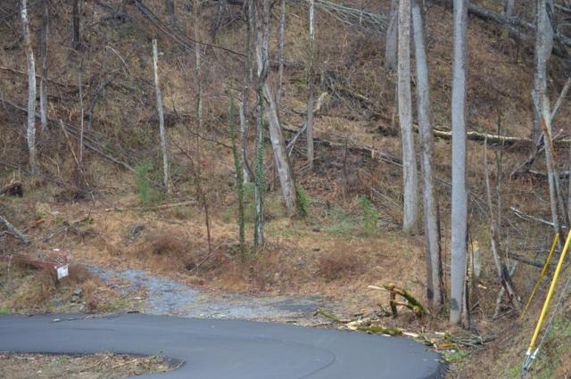 Woodland Dr Drive, Sevierville, TN 37862 (#1065215) :: Billy Houston Group