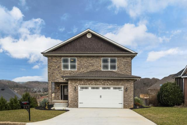 509 Calthorpe Lane, Knoxville, TN 37912 (#1065319) :: Shannon Foster Boline Group