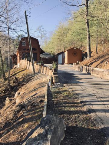 1315 Rocky Top Way, Townsend, TN 37882 (#1065688) :: The Creel Group | Keller Williams Realty