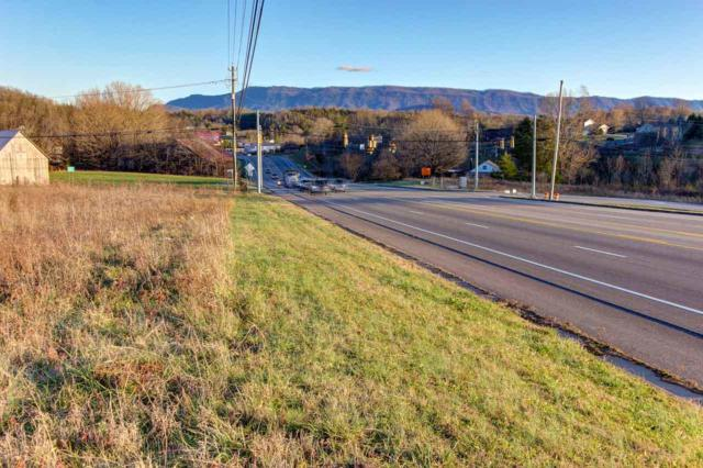 L6 Chapman Hwy, Seymour, TN 37865 (#1066066) :: Billy Houston Group