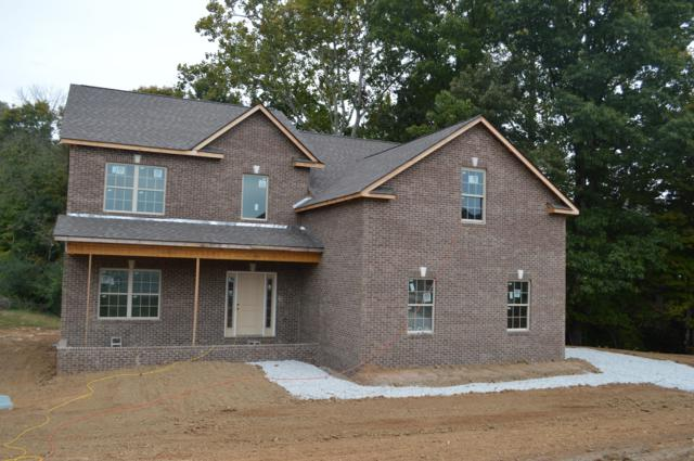 4520 Mount Mabry Lane, Knoxville, TN 37938 (#1066247) :: Billy Houston Group