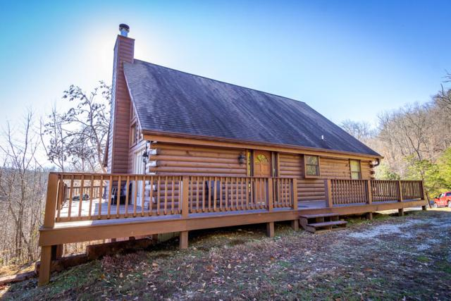 385 Wildcat Hollow Rd, New Tazewell, TN 37825 (#1066320) :: Shannon Foster Boline Group