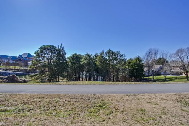 163 Indian Shadows Drive, Maryville, TN 37801 (#1066386) :: Billy Houston Group