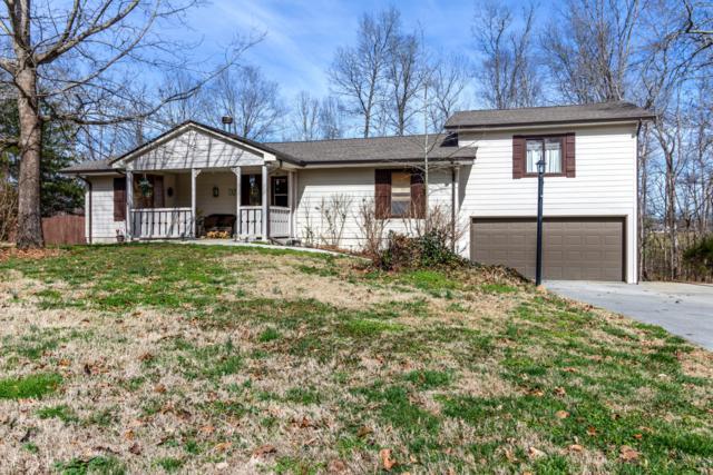 351 Fox Creek Rd. Rd, Seymour, TN 37865 (#1066833) :: Billy Houston Group