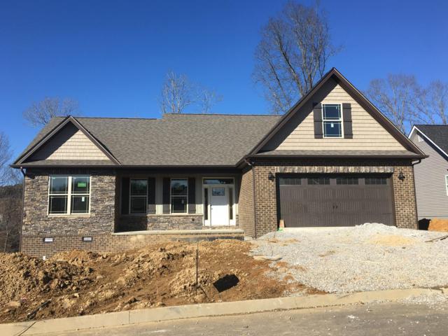 517 Greystoke Lane, Knoxville, TN 37912 (#1067019) :: Billy Houston Group