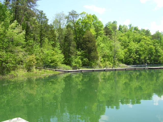 Lot 590 Whistle Valley Rd, Tazewell, TN 37879 (#1067093) :: Shannon Foster Boline Group