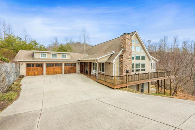 191 Clearwater Rd, New Tazewell, TN 37825 (#1067412) :: Shannon Foster Boline Group