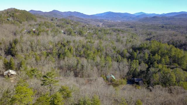 Hawk View Drive, Townsend, TN 37882 (#1067463) :: Billy Houston Group