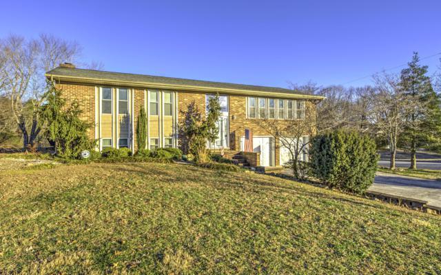 229 Candora Cross Rd, Maryville, TN 37804 (#1067554) :: Billy Houston Group