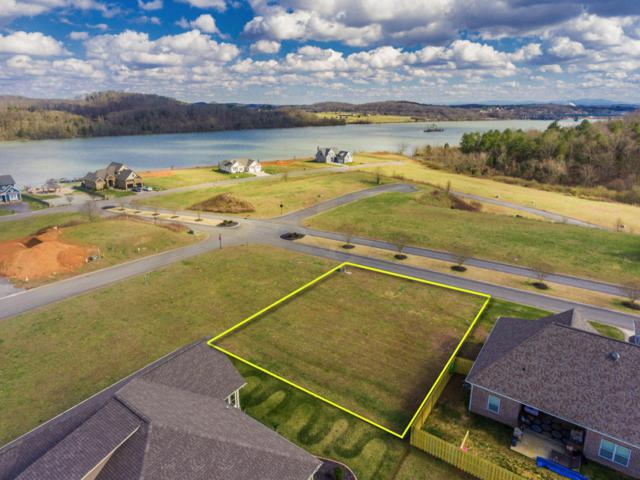 299 Lighthouse Blvd, Loudon, TN 37774 (#1067940) :: Shannon Foster Boline Group