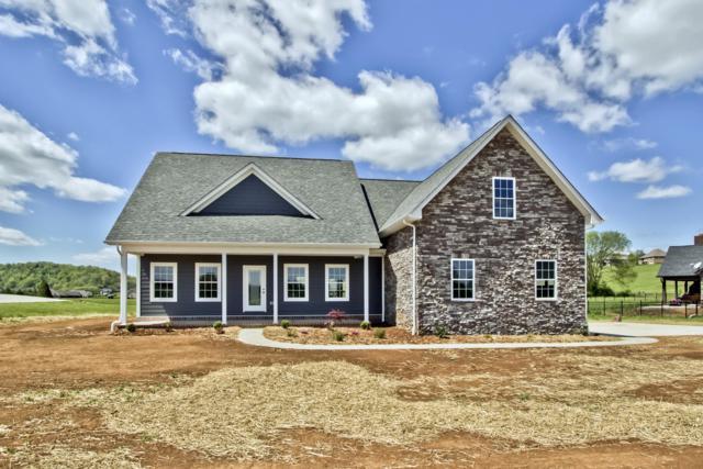 2719 River Island Blvd, Kodak, TN 37764 (#1070298) :: Venture Real Estate Services, Inc.