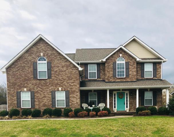 141 Ellington Drive, Maryville, TN 37804 (#1070491) :: The Cook Team