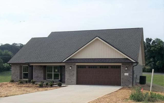 112 Montgomery Farms Drive, Friendsville, TN 37737 (#1071077) :: Billy Houston Group