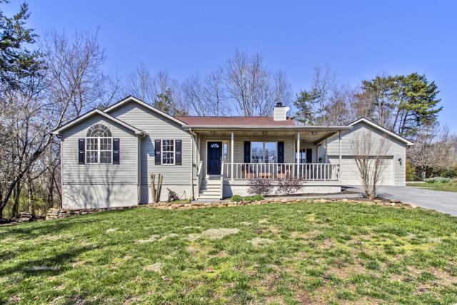 206 Daksi Lane, Loudon, TN 37774 (#1071495) :: Venture Real Estate Services, Inc.