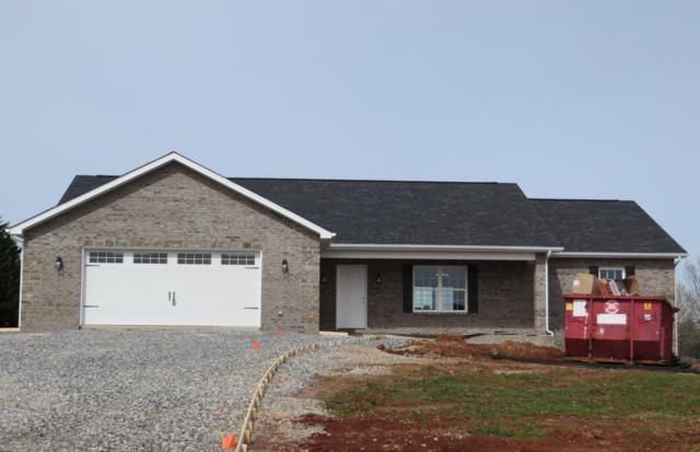 1315 Misty Mead Drive, Sevierville, TN 37876 (#1072144) :: The Terrell Team
