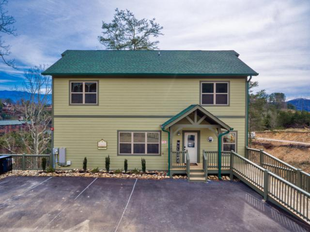 1129 Cove Falls Way, Pigeon Forge, TN 37863 (#1072432) :: Billy Houston Group