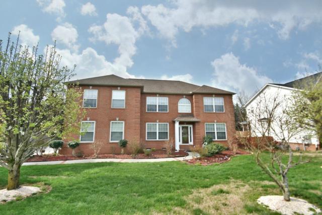 611 Blue Herron Rd, Knoxville, TN 37934 (#1072818) :: Billy Houston Group